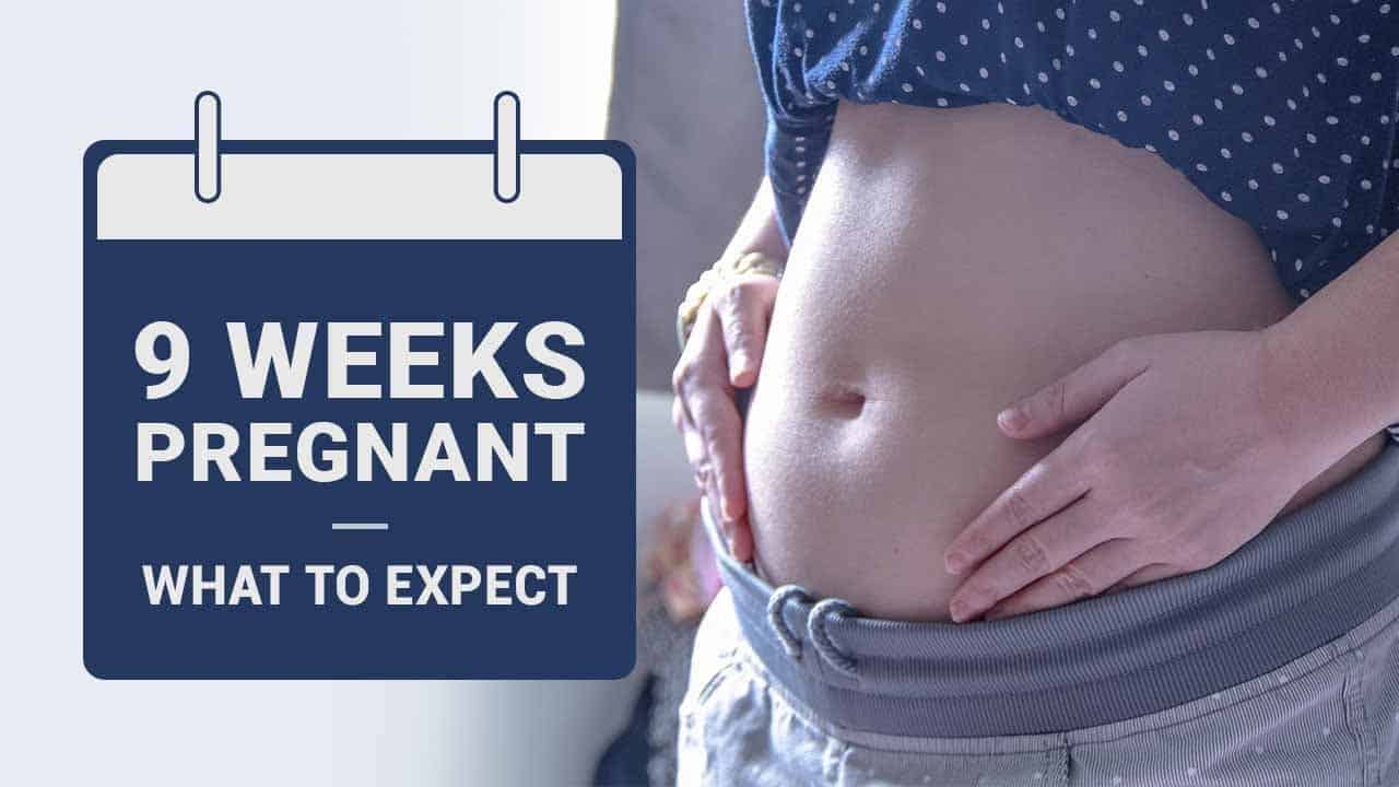 9 Weeks Pregnant - Symptoms, Baby Development and Experts ...